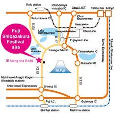Access|Fuji Shibazakura festival