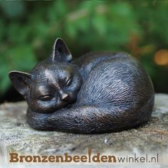 Bronze Sculpture Sleeping Cat The wonderful world of cats, It's a cats life that's for sure. This very loveable feline creature looks to be in total heaven Steinmetz, Bronze Sculpture, Cat Life, Wonders Of The World, Garden Sculpture, It Cast, Creatures, Outdoor Decor, Animals