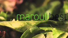The hydroponic MarouliBest© solution is designed by the DKG Group in collaboration with the IRTC (International Research and Training Centre for Sustainabili...