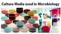 List of culture media used in microbiology with their uses