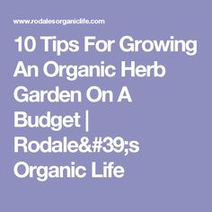 10 Tips For Growing An Organic Herb Garden On A Budget | Rodale's Organic Life