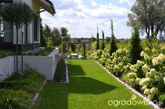 Typografia ogrodu - strona 3102 - Forum ogrodnicze - Ogrodowisko