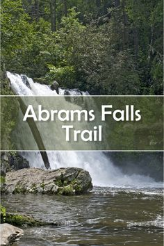 Abrams Falls is one of the most popular hikes in Great Smoky Mountains National Park. It is in Cades Cove. More than 1,000 people a day hike to Abrams Falls.