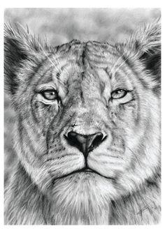 Soni oroszlán xxx videó