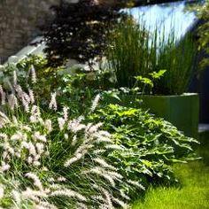 moderner Garten von  GARDEN TROTTER