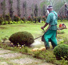 Jardineiro e paisagista O curso de jardinagem e paisagismo pode ser encontrado na modalidade presencial e de ensino à distância. Essa é uma oportunidade e