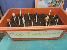 Jack and the beanstalk magic beans - cute idea for my co-op preschool class. Preschool Science, Science Activities, Activities For Kids, Traditional Tales, Traditional Stories, Eyfs Jack And The Beanstalk, Fairy Tale Activities, Fairy Tales Unit, Preschool Classroom