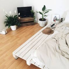 pallet bed white wood hardwood floors bedroom goals plants crate tv stand boho a. Pallet Bedframe, Pallet Beds, My New Room, My Room, Home Bedroom, Bedroom Decor, Bedrooms, Bedroom Setup, Teen Bedroom