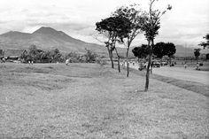 De Houtmanstraat te Bandoeng, Java, met slechts aan één zijde huizen.  1950