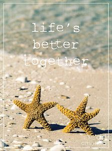 Florida Photograph - Life's Better Together by Edward Fielding