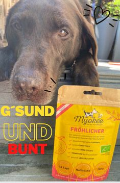 Check it out! Superfood, Check It Out, Food Grade, Vet Office, Fruit, Dog, Products