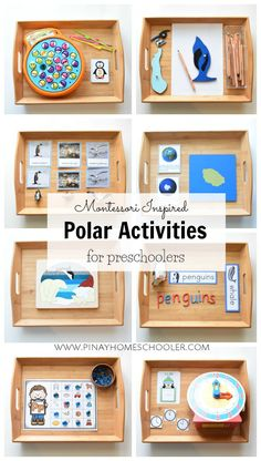 9 Montessori inspired activity trays this winter season in learning about the polar regions
