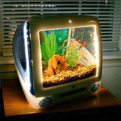 iMacquarium Fish Tank Built with iMac - FINALLY! an answer to the question: what to do with all those iMac too bad I have a phobia that prevents me from ever getting an aquarium. Imac G3, Unique Fish Tanks, Cool Fish Tanks, Old Mac Computers, Le Vent Se Leve, Tanked Aquariums, Fish Aquariums, Creation Deco, Paludarium