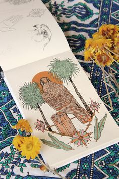 Carnarvon Gorge sketchbook page by @raychponygold // #illustration #drawing #sketchbook #falcon