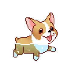 this is corgy orgy  channel????? on pinterest well not but here i will post corgy orgi stuff mostly so yeah