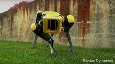 荷物運搬や災害支援などにむけた特殊ロボットを開発する米Boston Dynamicsは「The New Spotmini」の動画を公開した。これまでにない自然な4足歩行を見ることができる。近日正式に公開されるようで、その際に詳細が明らかになるものと思われる。