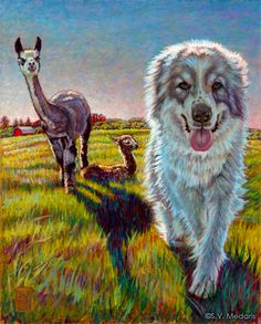 Painting of Great Pyrenees approaches viewer, alpaca mama and cria in background
