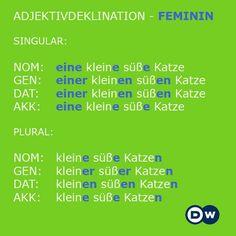 Declinación en femenino  https://www.facebook.com/dw.learngerman/