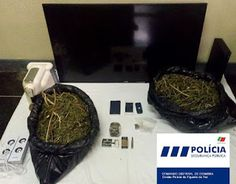 O Palhetas na Foz: Detido por posse de droga e artigos roubados cidad...