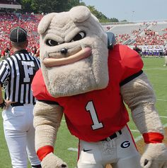 Bulldog mascot georgia bulldogs and uga football game on pinterest
