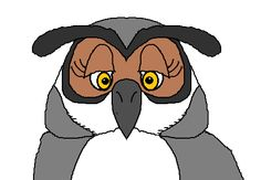 Free Teaching Materials to use with Hoot by Carl Hiaasen