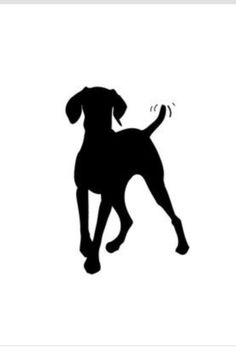 I love this silhouette of a weim