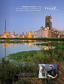 information on our general business and operational and financial issues can be found in the discussion on risk factors in TECO Energy's 2011 Annual Report.  https://materials.proxyvote.com/Approved/872375/20120224/AR_117915/
