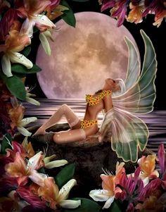 Hawaiian fairy  ~☆~