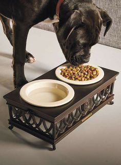Elevate your dog's food to a position that reduces neck strain and aids in digestion.