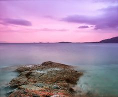 pink summer... Pink sunset