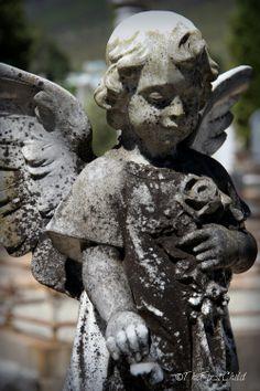 Cemetery   Franschhoek   Copyright of ©TheFirstChild Photograph Graveyards, Cape Town, Cemetery, Garden Sculpture, Photography, Photograph, Fotografie, Photoshoot, Fotografia