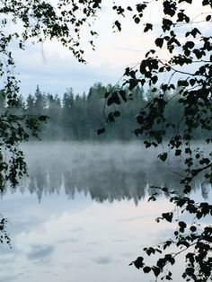 Midsummer in Finland. Feeling you are early in the morning going out and there is perfectly silent.