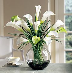 Calla Lillies are one of my favorite flowers.Hey grandma- the calla lillies are in bloom. Calla Lily Flowers, Calla Lillies, Silk Flowers, White Flowers, Flowers Vase, White Lilies, Fresh Flowers, Ikebana, Beautiful Flower Arrangements