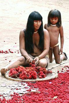 Brazilian Indian woman harvesting uru-ku (urucum). Photo Facebook-Save the Amazônia ~Faces of the World~