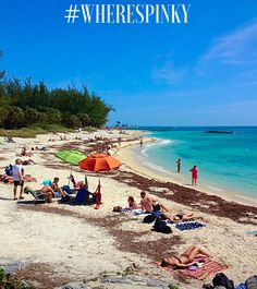 This is a gorgeous beach in Key West called Fort Zachary State Park. Go on a scavenger hunt and you'll see pretty places like this!