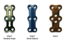 DePuy Synthes CSLP