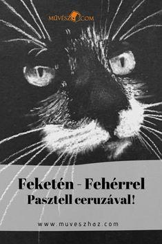 Hogyan rajzoljunk szépen, gyorsan cicát? Kattints és megmutatjuk! Techno, Movies, Movie Posters, Art, Art Background, Films, Film Poster, Kunst, Cinema