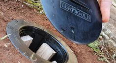 Installing a Termite Station - Termigold Tips, Counseling
