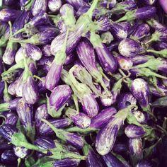 Fariytales (mini eggplants)