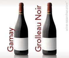 Gamay - Grolleau Noir