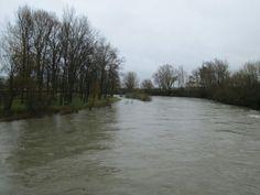 Crecida del rio Esla por Mansilla de las Mulas.