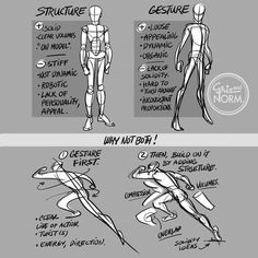 """grizandnorm:""""Tuesday Tips - Structure/Gesture: Why Not Both!Probably one the most compelling issue to deal with when drawing characters. There's clear pros and cons to both approach. The key, IMO, is to straddle the line between both. Give appeal. Male Figure Drawing, Figure Drawing Reference, Anatomy Reference, Art Reference Poses, Hand Reference, Anatomy Drawing, Anatomy Art, Drawing Techniques, Drawing Tips"""