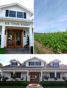 B.R Cohn Winery. Sonoma, CA.  Can you believe this was the manager of the Doobie Brothers? A lot of charity music events go on here.  The wine is pretty good just stay away from the silver label.