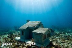 Under the sea art installation.