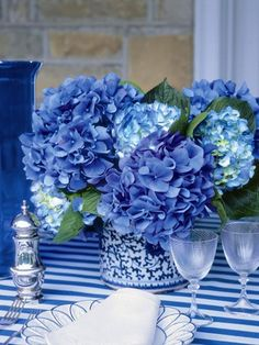 Blue hydrangeas, lovely color!