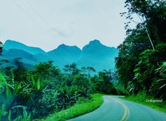 Estrada da Graciosa, Curitiba, PR                                                                                                         ...