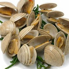 Roasted Clams with Garlic Sauce - A garlic sauce, so versatile that it works well with most shellfish, is served with fresh local clams to give a delicious meal in only 20 minutes! - www.fishisthedish.co.uk/recipes/roasted-clams-with-garlic-sauce