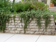 Recycled concrete wall--low wall for raised bed. Serenity in the Garden: Repurposed and Recycled - Creative Ideas for Garden Design Small Backyard Gardens, Large Backyard, Backyard Landscaping, Outdoor Gardens, Landscaping Ideas, Recycled Concrete, Broken Concrete, Recycled Glass, Concrete Retaining Walls