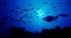 Un baptême de plongée sous-marine Morocco
