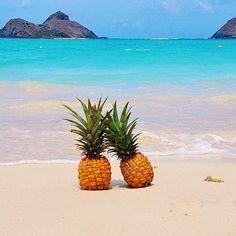 Pineapples in love